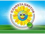 """Логотип """"Планета цветов"""" ИП Борисова Н.Н."""