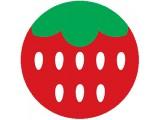 Логотип Веб-студия Земляника